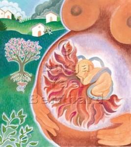The Amazing Placenta