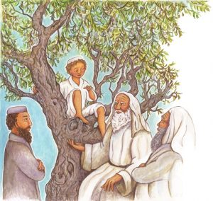 An illustration from the book: the olive tree is 28 years old.