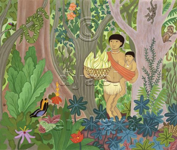 Yanomama