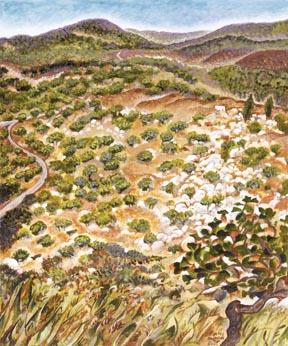 Kaditah Valley