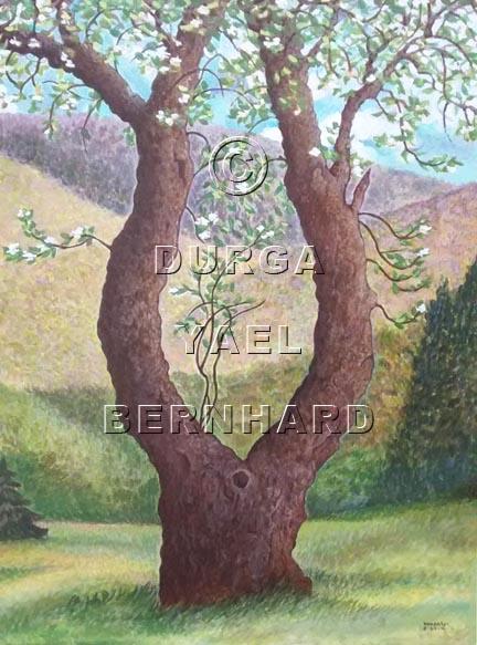Panther Mountain Apple Tree – acrylic on canvas – © Durga Yael Bernhard